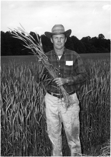 Ag Extension Agent with Wheat (NCSU Archives)