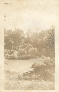 Franklinville mill pond