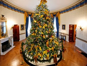 The 2012 White House tree in the Blue Room.